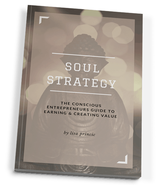 Soul Strategy book by Lisa Princic