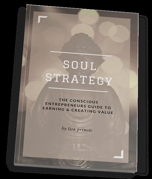Soul Strategy book by Lisa Princic